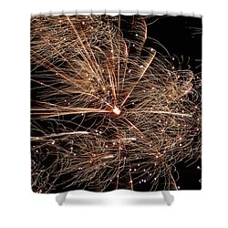 Shower Curtain featuring the photograph Bold Burst #0711 by Barbara Tristan