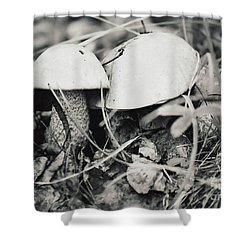 Boletus Mushrooms Shower Curtain