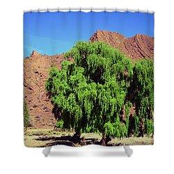 Bolivian Landscape  Shower Curtain