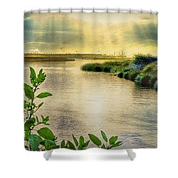 Shower Curtain featuring the photograph Bolsa Chica Bird Sanctuary by Joseph Hollingsworth