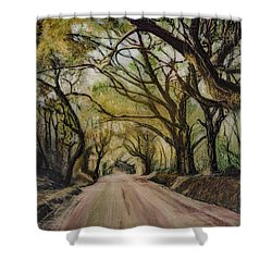 Shower Curtain featuring the painting Bombay Road by Ron Richard Baviello