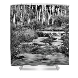 Bonanza Streaming Shower Curtain by James BO Insogna