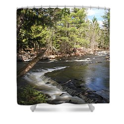 Shower Curtain featuring the photograph Upper Bond Falls No.7965 by Janice Adomeit