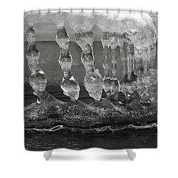 Bongles Shower Curtain