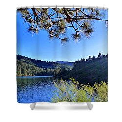Bonito Shower Curtain by Skip Hunt
