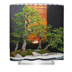 Bonsai Art Shower Curtain