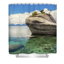 Bonsai Rock Shower Curtain
