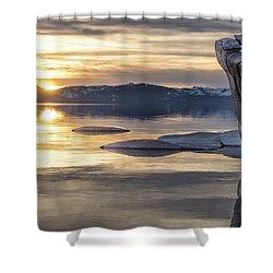 Bonsai Sunset Shower Curtain