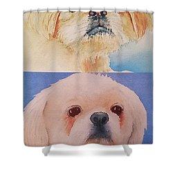 Booboo Baxter V Shower Curtain