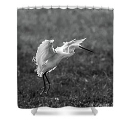 Book_cover_snowy Egret Shower Curtain