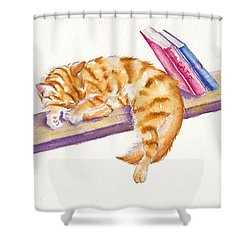 Bookend Shower Curtain by Debra Hall