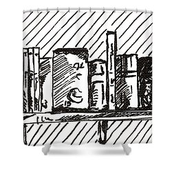 Bookshelf 1 2015 - Aceo Shower Curtain
