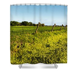 Boot 3 Shower Curtain