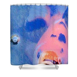 Shower Curtain featuring the photograph Bop by Heidi Smith