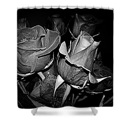 Boquet Of Roses Shower Curtain by Ester  Rogers