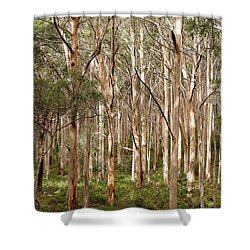 Shower Curtain featuring the photograph Boranup Forest Portrait by Ivy Ho