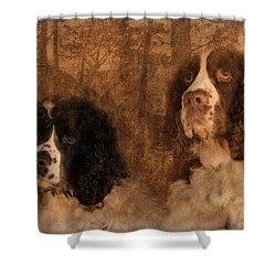 Border Control Shower Curtain by Wallaroo Images