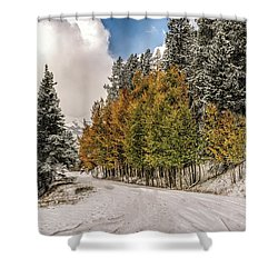 Boreas Pass Road Aspen And Snow Shower Curtain