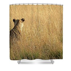 Born Free Shower Curtain