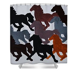 Shower Curtain featuring the photograph Born Free by Joseph Frank Baraba