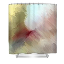 Born In Bethlehem Shower Curtain