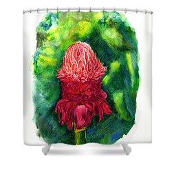 Born In Vietnam Shower Curtain
