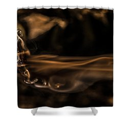 Born Of Flame Shower Curtain
