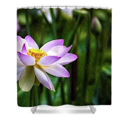 Shower Curtain featuring the photograph Born Of The Water by Edward Kreis