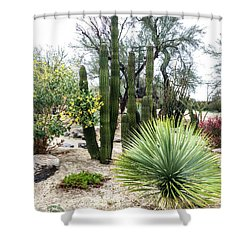 Borrego Botanical Garden Shower Curtain