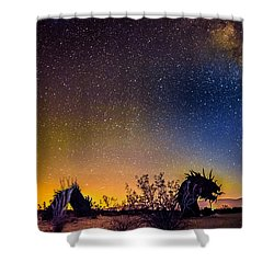 Borrego Springs Dragon Shower Curtain