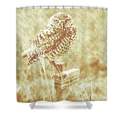 Borrowing Owl Shower Curtain by Timothy Lowry
