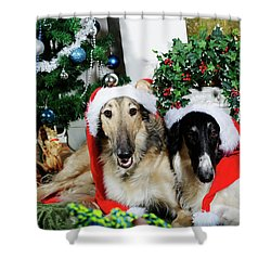 Borzoi Puppies Wishing A Merry Christmas Shower Curtain
