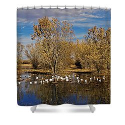 Bosque Del Apache Shower Curtain by Kurt Van Wagner