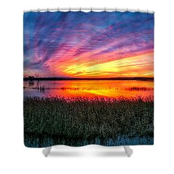 Bosque Sunrise Shower Curtain