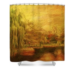Boston Common In Autumn Shower Curtain by Liz Leyden