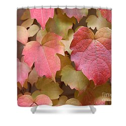 Boston Ivy Turning Shower Curtain