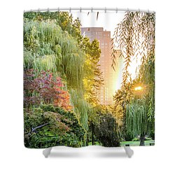 Boston Public Garden Sunrise Shower Curtain by Mike Ste Marie