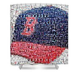 Boston Red Sox Cap Mosaic Shower Curtain by Paul Van Scott