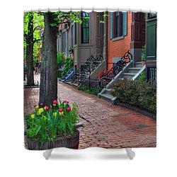 Boston South End Row Houses Shower Curtain by Joann Vitali