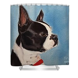 Boston Terrier Shower Curtain