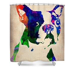 Boston Terrier Watercolor Shower Curtain by Naxart Studio