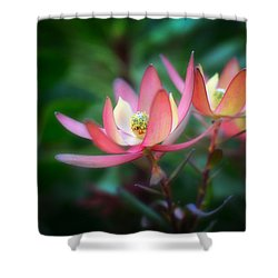 Botanic Garden Of Wales 1 Shower Curtain