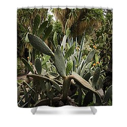 Botanic Garden Valencia Shower Curtain