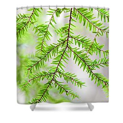 Shower Curtain featuring the photograph Botanical Abstract by Christina Rollo