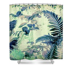 Shower Curtain featuring the mixed media Botanical Art - Fern by Bonnie Bruno