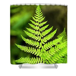 Botanical Fern Shower Curtain
