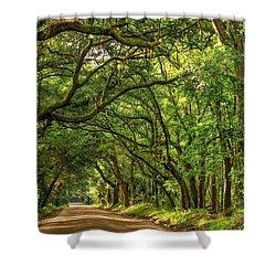 Botany Bay Edisto Island South Carolina Road Light And Shadow Shower Curtain