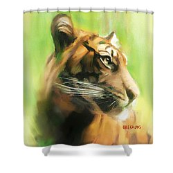 Bote Danjere Shower Curtain