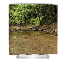 Bottle Creek Shower Curtain