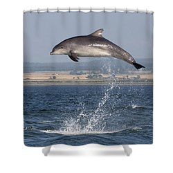 High Jump - Bottlenose Dolphin  - Scotland #42 Shower Curtain